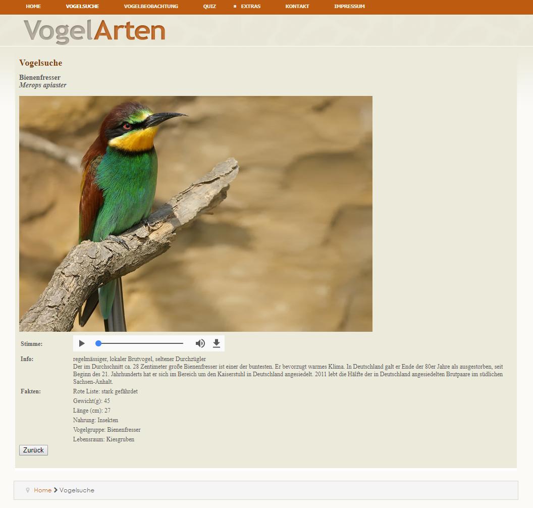 webentwicklung-vogelarten02
